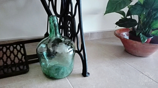 glass jar and plant